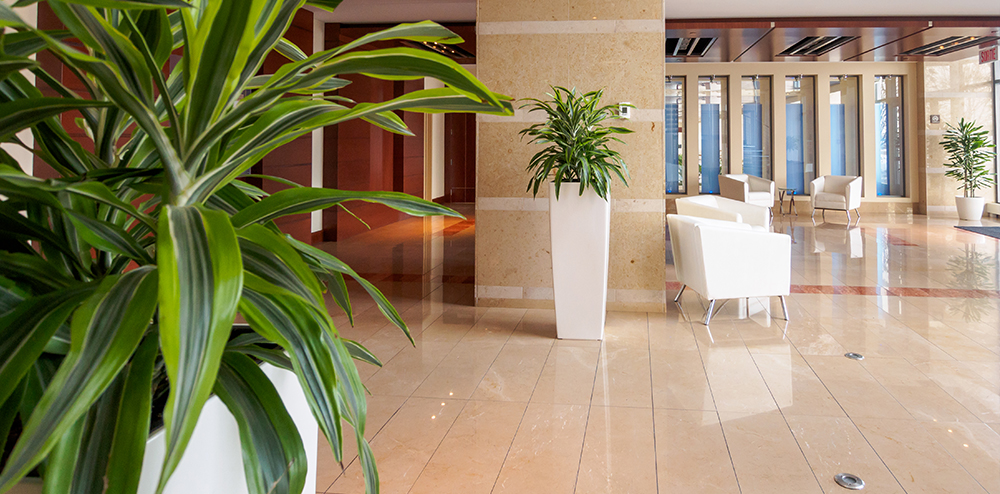 Plant rental with maintenance for businesses